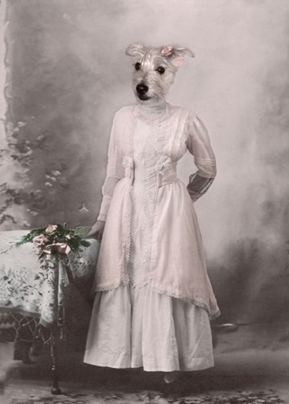 Jill, Jack Russell Terrier, Whimsical Dog Art, Vintage Dog Print, Anthropomorphic, Altered Photo, Gift for a dog lover, Victorian wall decor