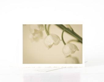 Lily of the Valley Blank Photo Greeting Cards, Sympathy Cards, Thinking of You Cards, Shabby Chic, Ethereal Nature Flower Photography Cards