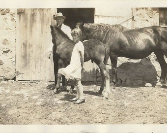 Colt and Coltish - Antique 1910s Man, Girl, Mare and Foal Silver Gelatin Print Photograph