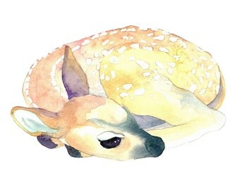 Original Watercolor Painting, Fawn No. 3