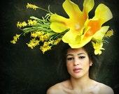 Giant Yellow Bell Daffodil Jessamine flower Fascinator headpiece headdress Derby hat Flower headdress, flower,HAT