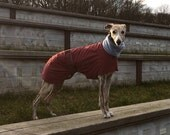 Wind and Weather Coat / for all Sighthound Breeds