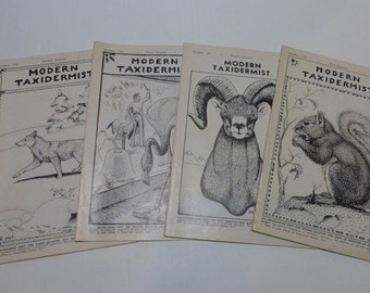 Vintage 1968 Modern Taxidermy Magazines Four Quarterly Issues