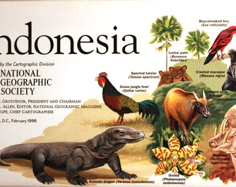 Indonesia vintage map/  National Geographic maps/ Cartography/ maps/ South Pacific/ endangered species/ forest survivors