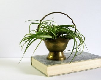 Vintage Brass Planter with Handle - Brass Basket - Small Brass Bowl - Air Plant Holder - Brass Home Decor - Serving Dish Candy Dish Nut Bowl