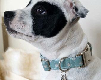 "Adjustable dog collar ""Glossy stars grey"""