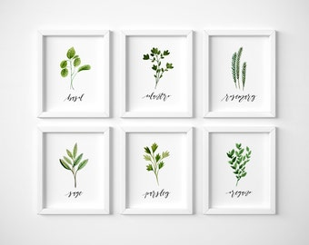 set of 6 herb printables · watercolor herb collection · kitchen decor · herb wall signs · oregano, sage, rosemary, parsley, cilantro, basil