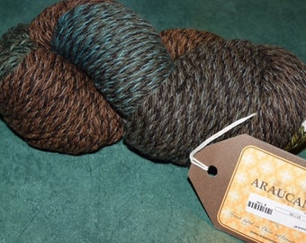Panguipulli Yarn by Araucania