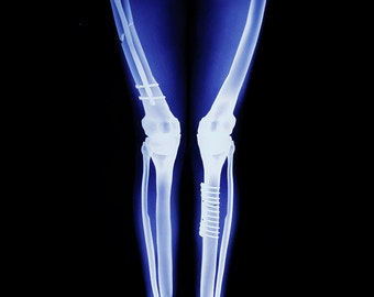 X-Ray Leggings, Gothic Clothing, Skeleton Leggings, Halloween Leggings, Glow in The Dark Leggings, Skull Leggings, Pagan Clothing