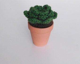 crochet cactus | crochet succulent #3