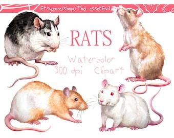 Rats Clipart, Digital Watercolor Illustration, Rat Clip Art, Hand Drawn Stock Illustration, Watercolor Animals
