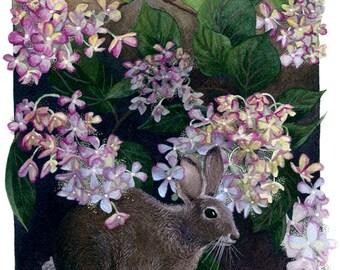 Fine Art Print of Original Watercolor Painting - Garden Secrets