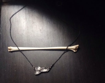 Rattus rattus mandible: rat jaw bone in sterling silver