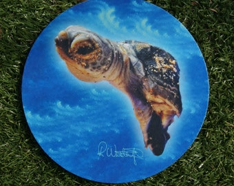 Baby Turtle Mousepad/Hotpad/Placemat/Centerpiece