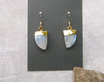 Moonstone Earrings, Moonstone Mini Horn Earrings, Gold Leaf Moonstone Earrings, Faceted Moonstone Earrings