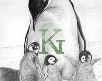 "KG Cards ""Penguins"" Greeting Card"