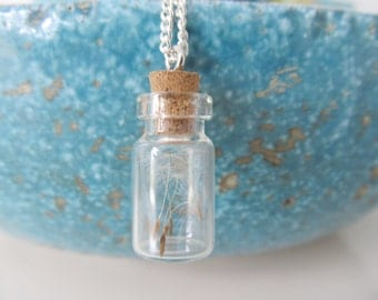 Make a wish necklace, bottle necklace, dandelion seed necklace