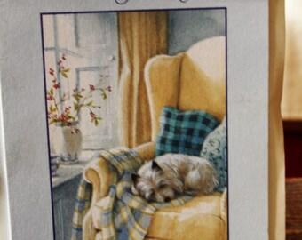 Dog on Chair Birthday Card