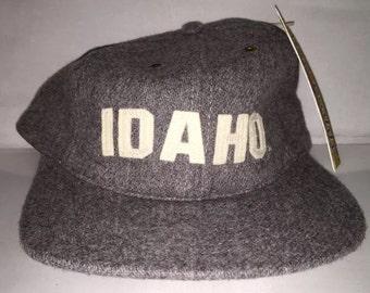 Vintage Idaho Vandals Strapback hat cap rare American Needle deadstock NCAA College football