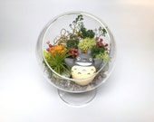 DIY Totoro Inspired Terrarium Kit with Moss, Bark, and Stones, and More!