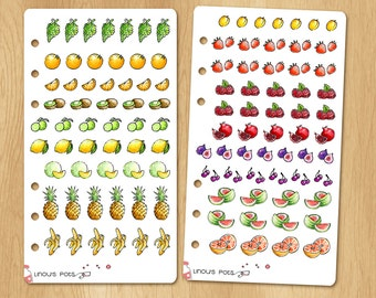Choose Your Own Watercolor Stickers for Receipts, Life Planners, etc - 16 Kind of Fruits for a Total of 111 Stickers