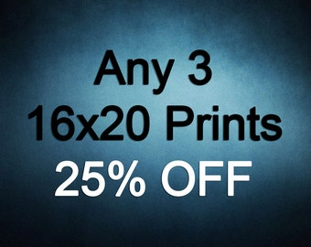 16x20 Prints - Choose any 3 ColorPopPhotoShop Fine Art Photographs