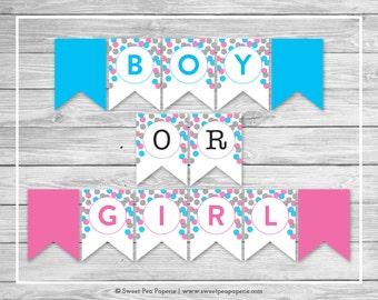 Pink and Blue Gender Reveal Banner - Printable Gender Reveal Banner - Pink Blue Silver Gender Reveal - Boy Or Girl Banner - SP113