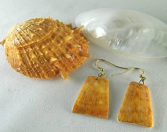 Beach Jewelry - Orange Spiny Oyster Earrings