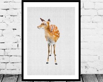 baby deer Print, Instand download, woodlands animal print, Nursery wall art, Nursery printable art, Nursery decor, woodlands deer art