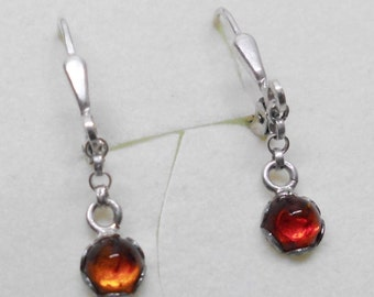 Silver 925 Silver earrings with amber SO150