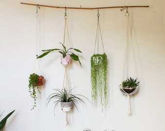 Single or Double Flexible Adjustable Fits All - Modern Hanging Planter