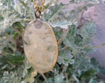 real money plant necklace