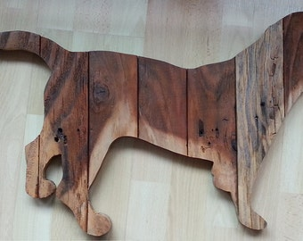 Beagle(sold)