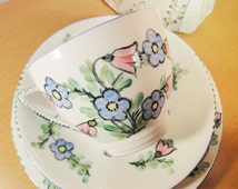Vintage Mintons China Tea Trio: Blue and Pink Flowers - Cup, Saucer and Plate