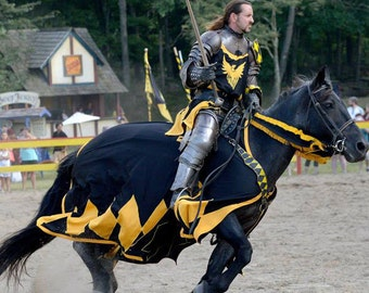 Medieval/Renaissance Jousting Caparison and Rein Covers Only, Custom Made, Choice of Colors and Device