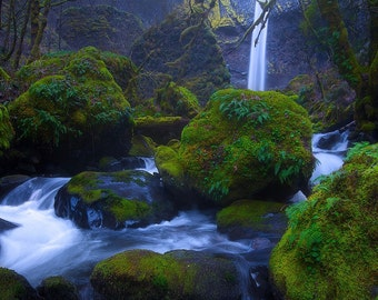 Twilight at Elowah, waterfall, waterfalls, Oregon, photograph, photography, wall art, spring, pnw, photo