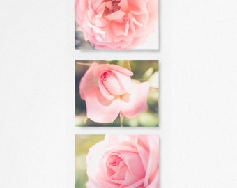 SET OF THREE Floral Pictures, Rose photograph, flower picture, Macro flower, fine art photography, Pink floral nursery, nursery photograph