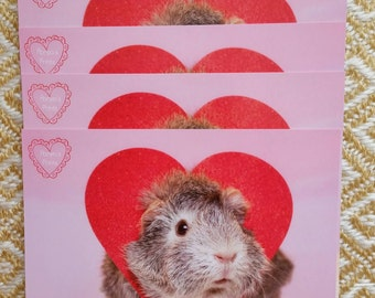 Guinea Pig Valentine's Day Flat Cards