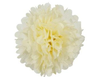Beige/Ivory Tissue Paper Pom's Pom's
