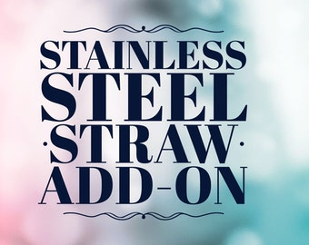 Stainless Steel Straw Add-On