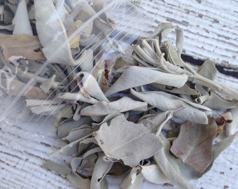 White Sage for Smudging by DBLorgan