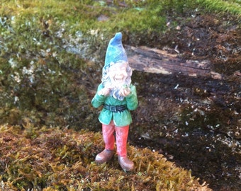 Miniature Garden Gmome, Miniature Gardening, Terrarium Garden, Flower Pot Garden, Fairy Garden, Miniatures