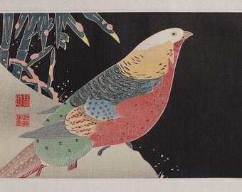 """JAKUCHU ITOU(伊藤若冲筆)   1716-1800 「鸚鵡・おうむ」 """"Parrots"""" Ukiyo-e  Woodblock  Prints"""