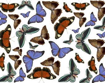 Wafer Butterflies, Edible Butterflies, Edible Cupcake Toppers, Edible Wafer Paper, Brown Butterfly, Butterflies For Cupcakes