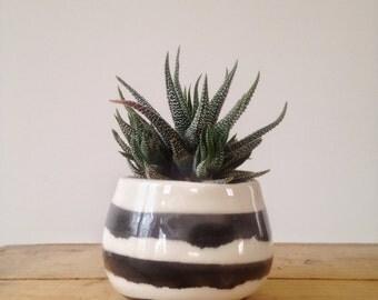 petit pot à plante ou à café