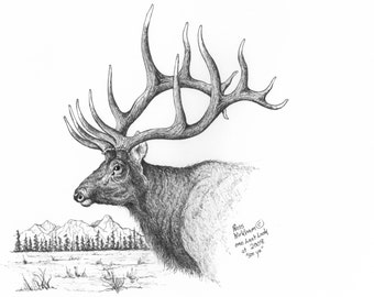 TROPHY BULL ELK Card