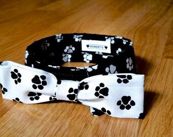 Dog Shirt Collar