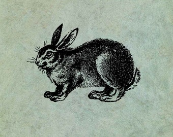 Rabbit Hare - Antique Style Clear Stamp