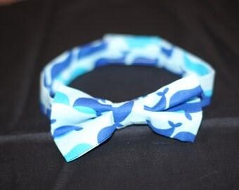Boy Bow Tie