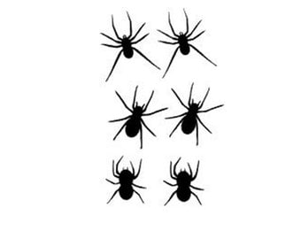 Spider Stickers - Spider Decals  - Bug Stickers - Happy Halloween Joke - Free Shipping - Halloween Prank - Scary Spiders - Creepy Spiders